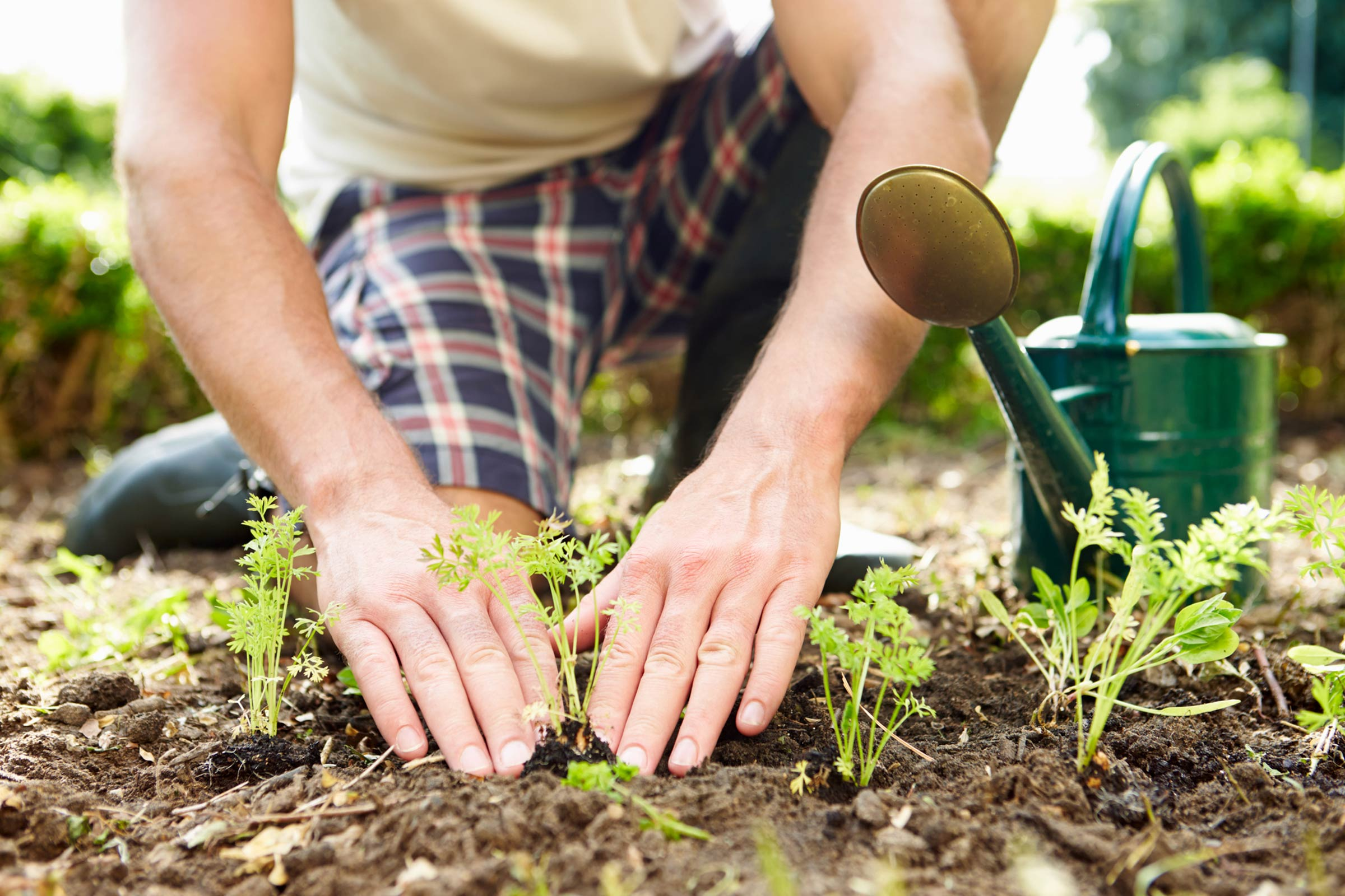 9 Tips For Effective Weed Killing