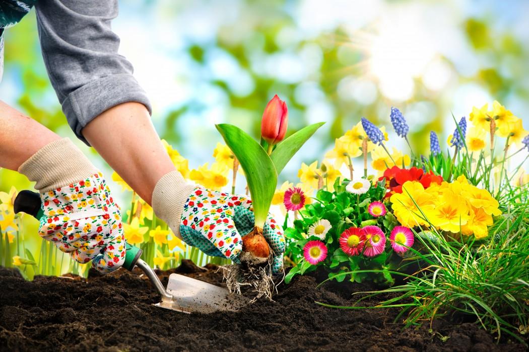 Artificial Grass- Create a Spell Bound Interior Around You