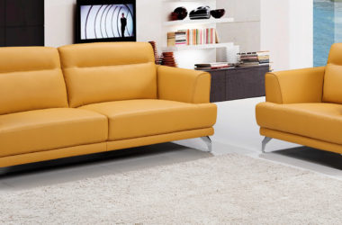 How to Protect Your Furniture From Termite?
