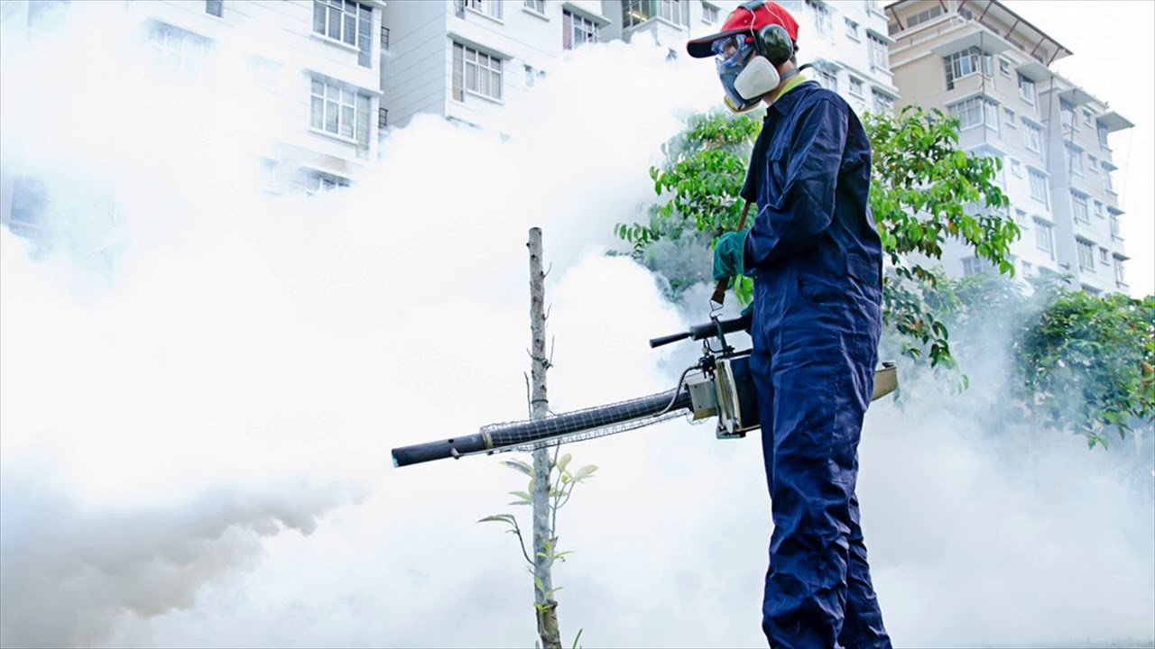 Pest Management Company Helps To Eradicate Pests From Your Home