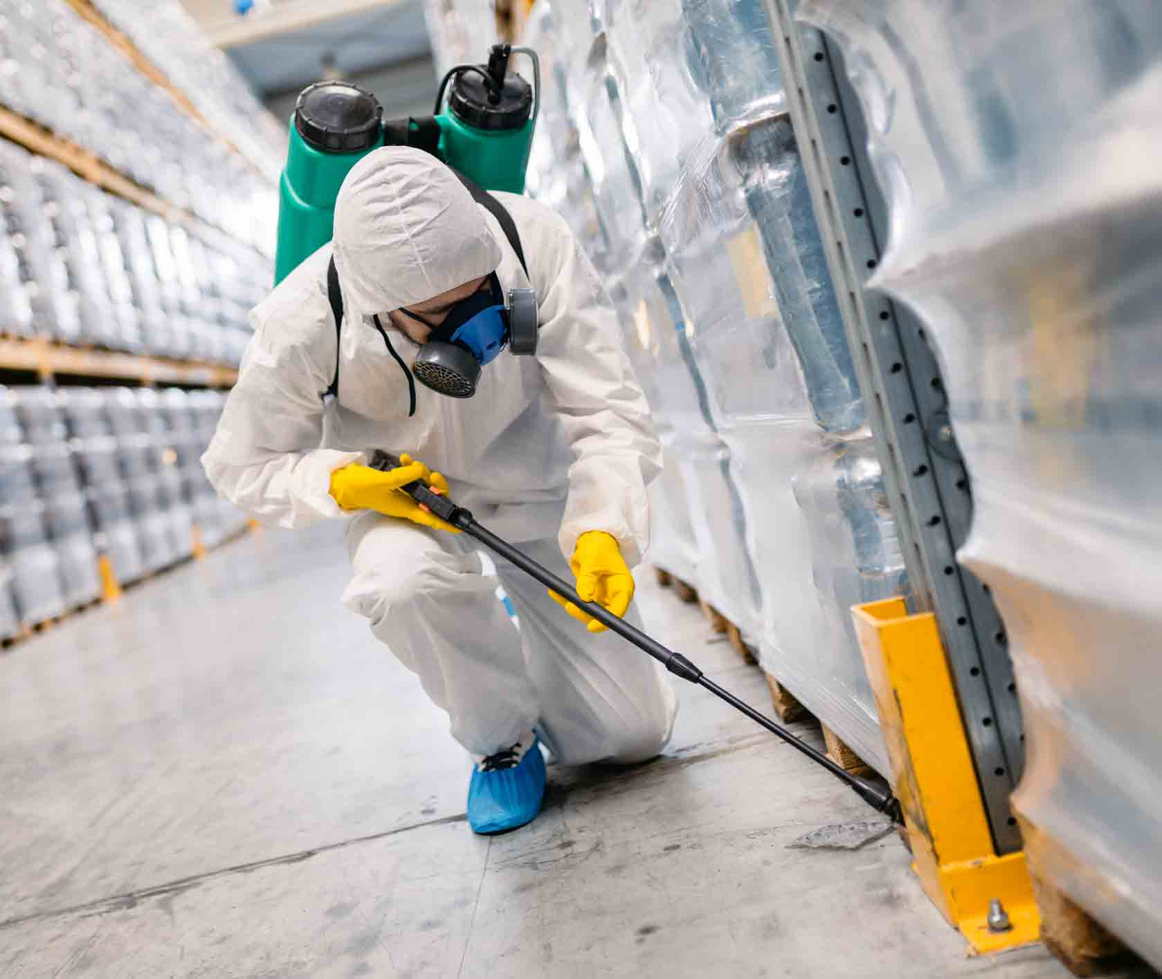 Top Tips Related To Diy Home Pest Control